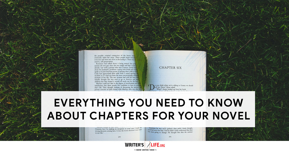what does chapters mean? A book open on some grass